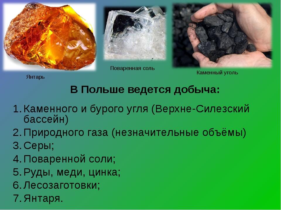 Каменного и бурого угля (Верхне-Силезский бассейн) Природного газа (незначит...
