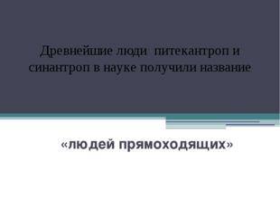 «людей прямоходящих» Древнейшие люди питекантроп и синантроп в науке получил
