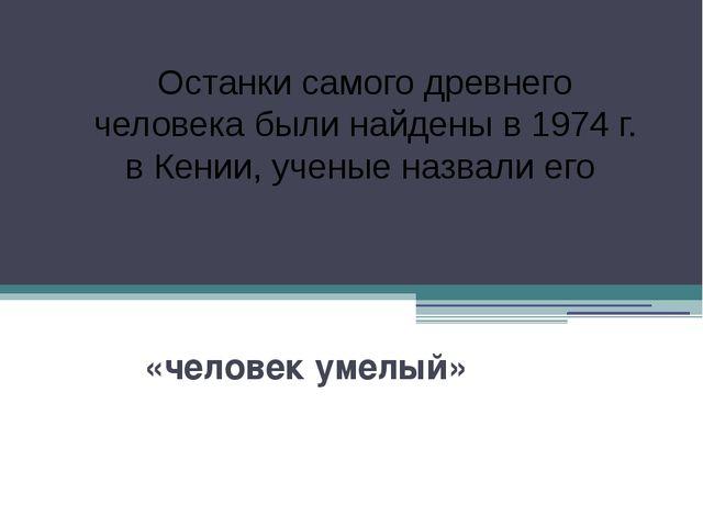 «человек умелый» Останки самого древнего человека были найдены в 1974 г. в К...