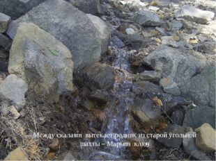 Каменные соты - памятник природы областного значения. Образованы в процессе
