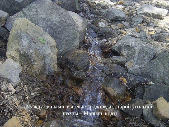 Каменные соты - памятник природы областного значения. Образованы в процессе...
