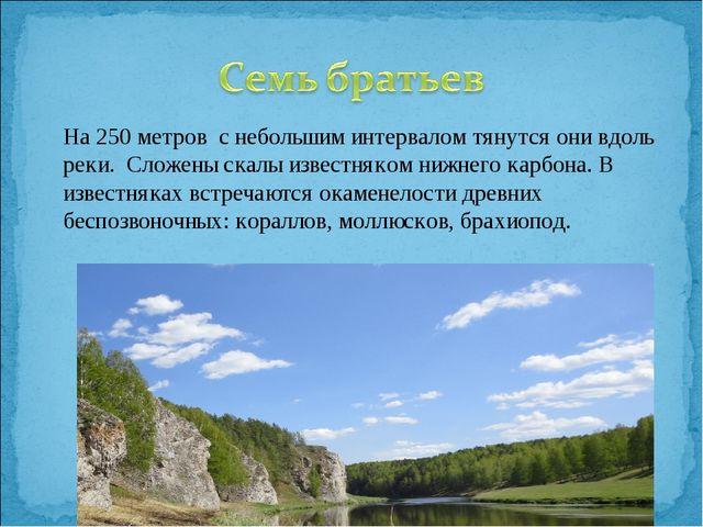 На 250 метров с небольшим интервалом тянутся они вдоль реки. Сложены скалы и...