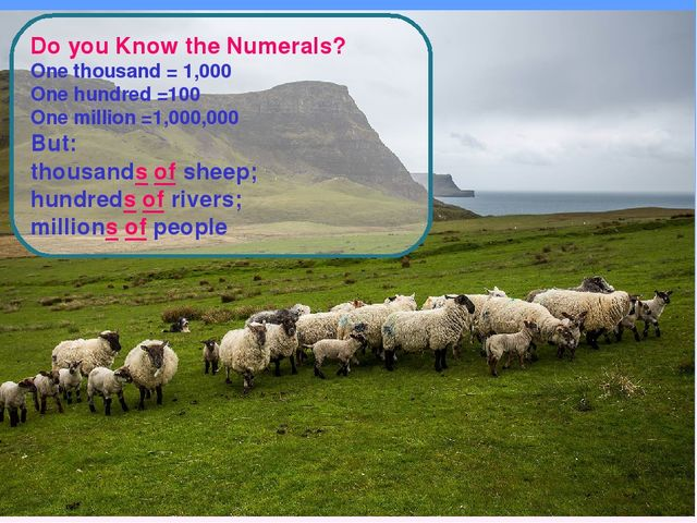 Do you Know the Numerals? One thousand = 1,000 One hundred =100 One million =...