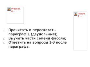 Прочитать и пересказать параграф 1 (двудольные); Выучить части семени фасоли;