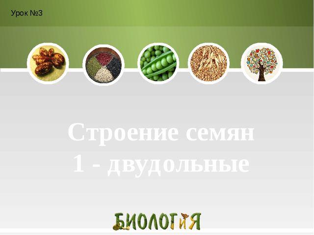 Строение семян 1 - двудольные Урок №3