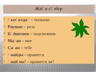 Жаңа сөздер Қызғалдақ – тюльпан Раушан – роза Бәйшешек – подснежник Маған – м