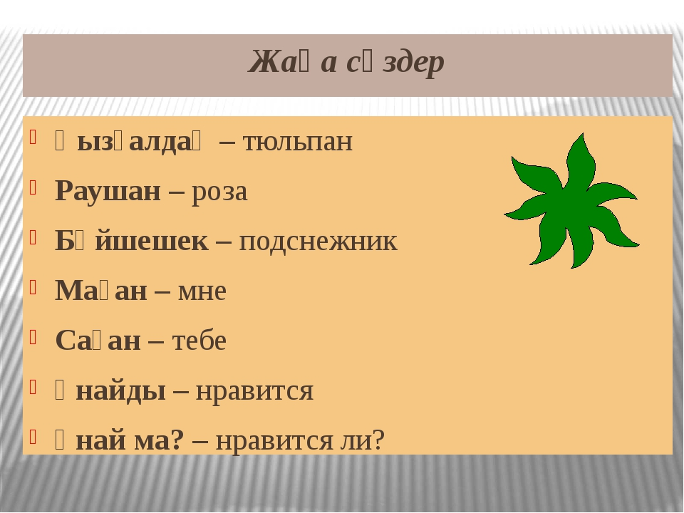 Жаңа сөздер Қызғалдақ – тюльпан Раушан – роза Бәйшешек – подснежник Маған – м...