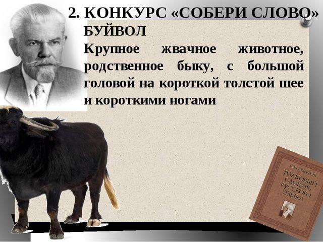 БУЙВОЛ Крупное жвачное животное, родственное быку, с большой головой на корот...