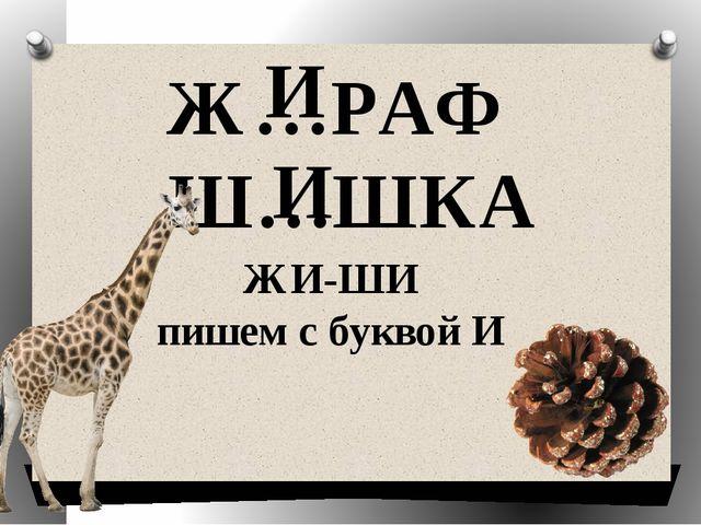 Ж…РАФ Ш…ШКА И И ЖИ-ШИ пишем с буквой И