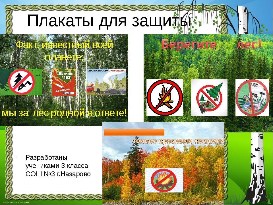 Плакаты для защиты леса Разработаны учениками 3 класса СОШ №3 г.Назарово