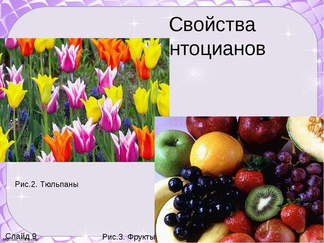 Свойства антоцианов Слайд 9 Рис.2. Тюльпаны Рис.3. Фрукты http://linda6035.uc...