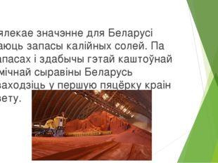 Вялекае значэнне для Беларусі маюць запасы калійных солей. Па запасах і здаб