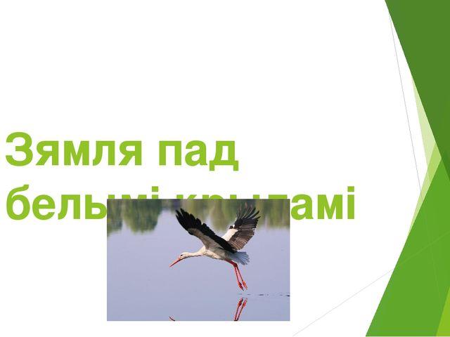 Зямля пад белымі крыламі