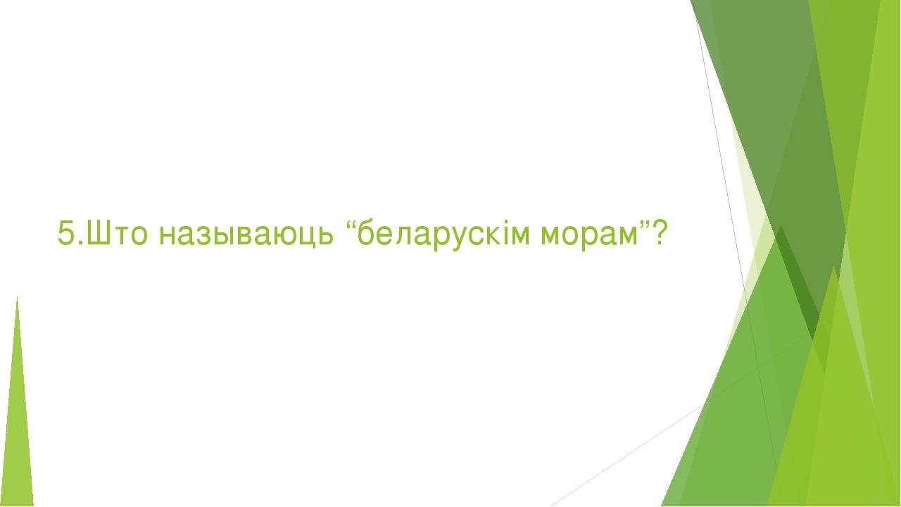 """5.Што называюць """"беларускім морам""""?"""