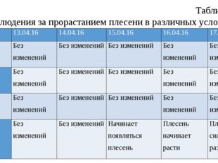 Таблица 1 Наблюдения за прорастанием плесени в различных условиях № п/п 13.04