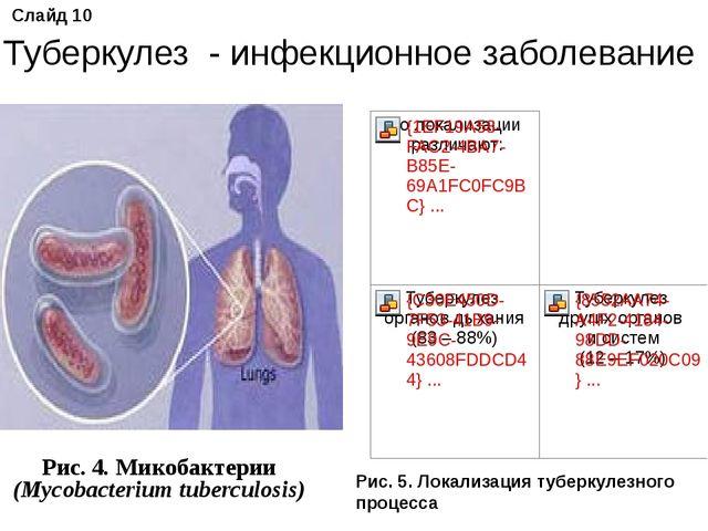 Рис. 4. Микобактерии (Mycobacterium tuberculosis) Слайд 10 Туберкулез - инфе...