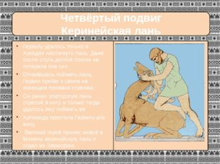 Четвёртый подвиг Керинейская лань Гераклу удалось только в Аркадии настигнут