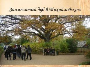Знаменитый дуб в Михайловском