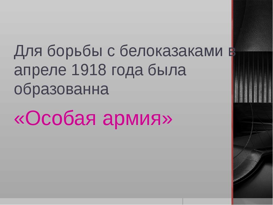 Для борьбы с белоказаками в апреле 1918 года была образованна «Особая армия»