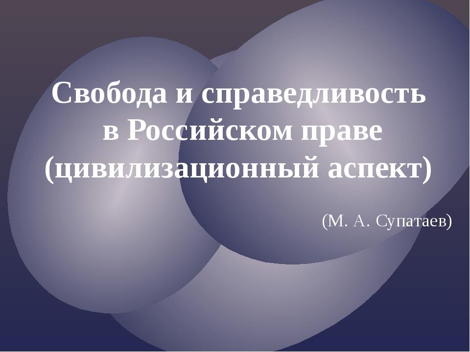 Свобода и справедливость в Российском праве (цивилизационный аспект) (М. А. С...