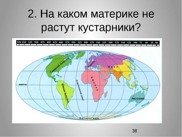 2. На каком материке не растут кустарники?