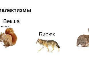 Диалектизмы Векша Ушкан Бирюк