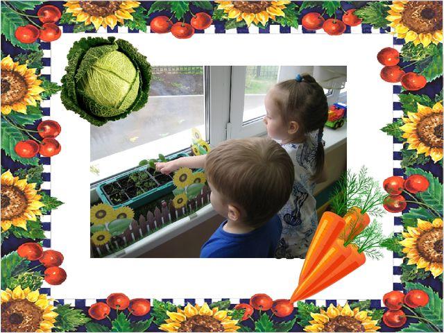 Посадка овощей