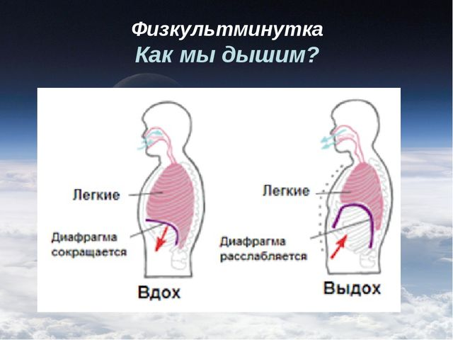 Физкультминутка Как мы дышим?