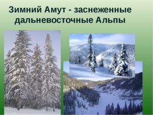Зимний Амут - заснеженные дальневосточные Альпы