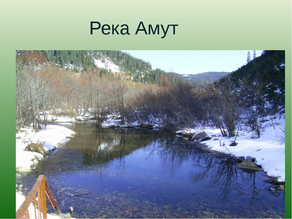 Река Амут