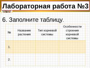 Лабораторная работа №3 6. Заполните таблицу. № Название растения Тип корневой
