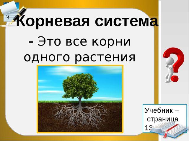 - Это все корни одного растения Корневая система Учебник – страница 13