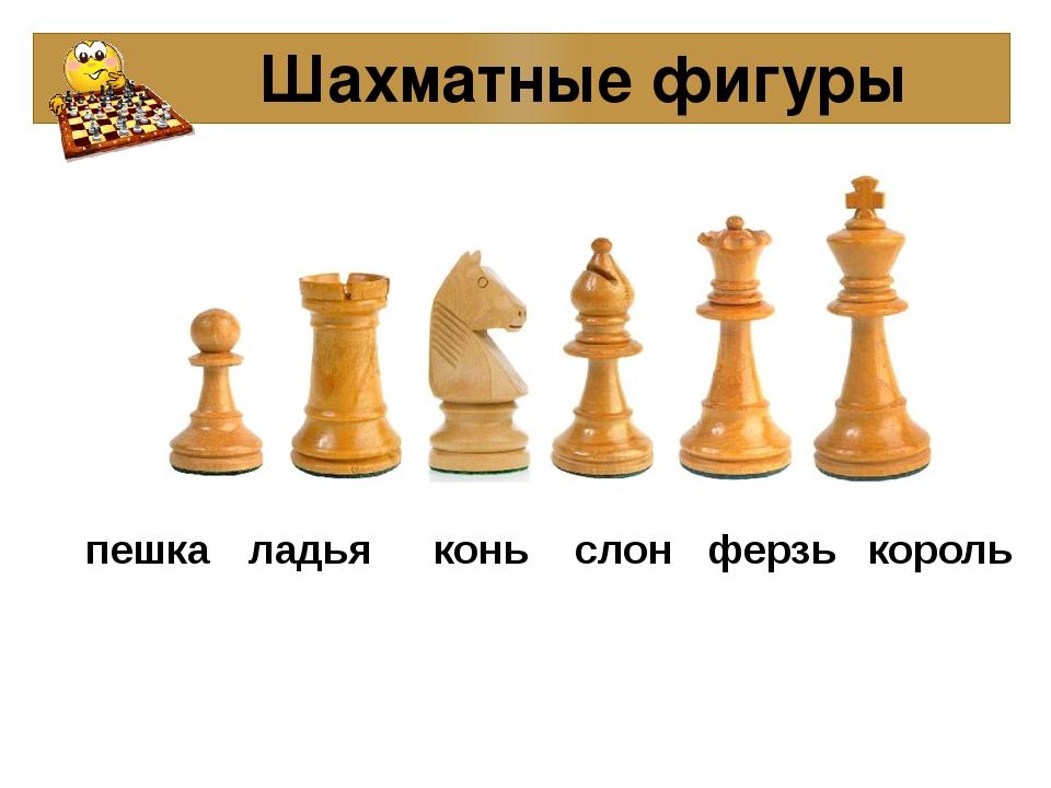 Шахматные фигуры пешка ладья конь слон ферзь король