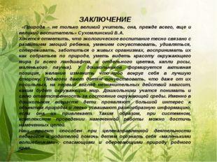 ЗАКЛЮЧЕНИЕ «Природа – не только великий учитель, она, прежде всего, еще и вел