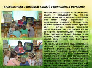 Знакомства с Красной книгой Ростовской области Красная книга – это одна из фо