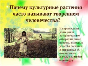 Почему культурные растения часто называют творением человечества? На протяжен