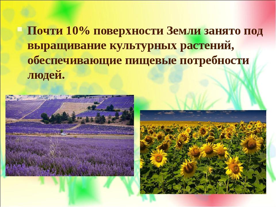 Почти 10% поверхности Земли занято под выращивание культурных растений, обесп...