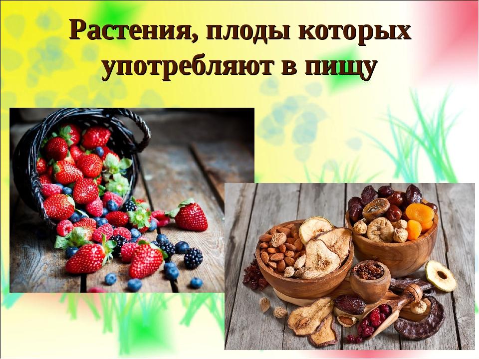 Растения, плоды которых употребляют в пищу