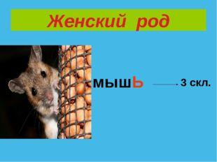 Женский род мышЬ 3 скл.