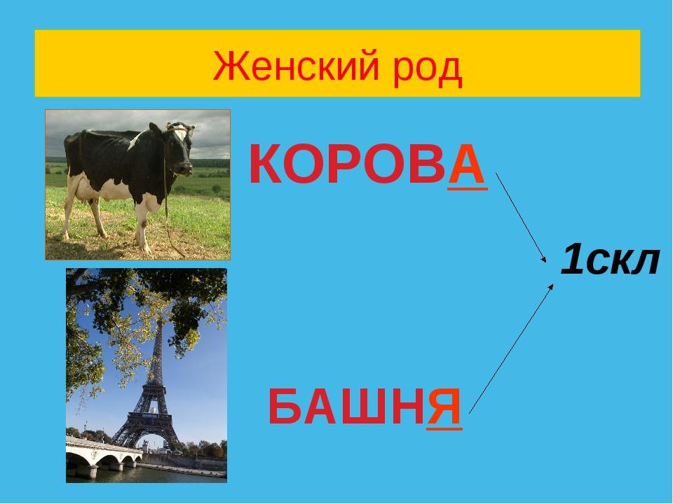 Женский род КОРОВА 1скл БАШНЯ