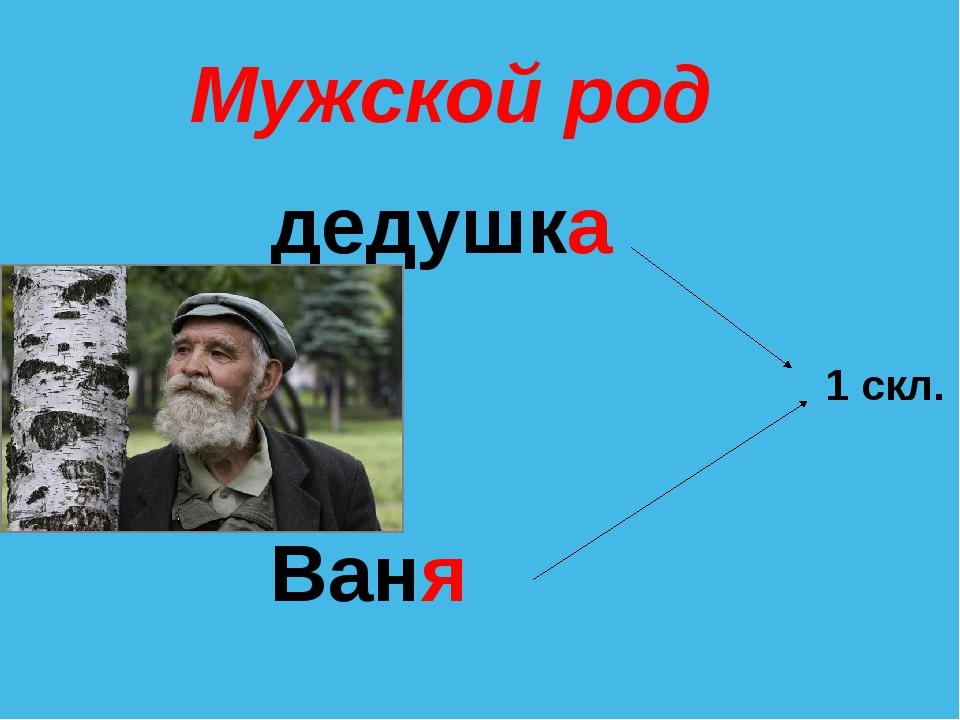 Мужской род дедушка Ваня 1 скл.