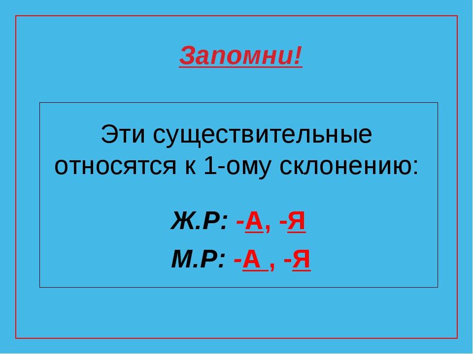 Эти существительные относятся к 1-ому склонению: Ж.Р: -А, -Я М.Р: -А , -Я Зап...