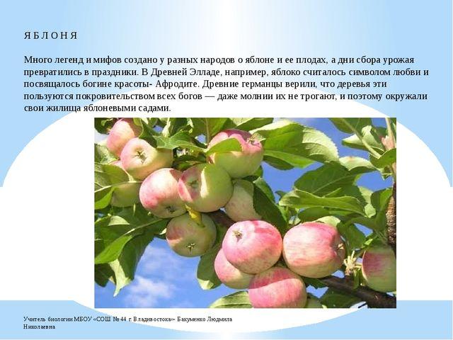 Я Б Л О Н Я Много легенд и мифов создано у разных народов о яблоне и ее плод...