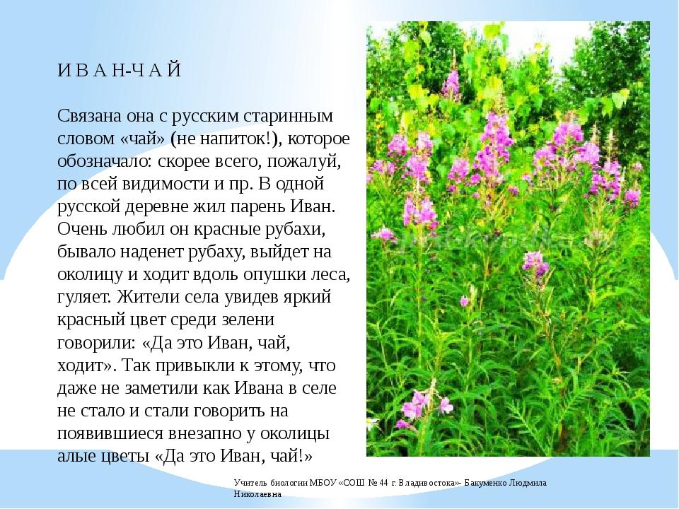 Цветы как иван чай