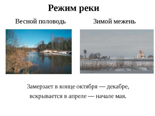 Режим реки Весной половодь Зимой межень Замерзает в конце октября — декабре,...
