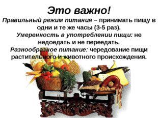 Это важно! Правильный режим питания – принимать пищу в одни и те же часы (3-5