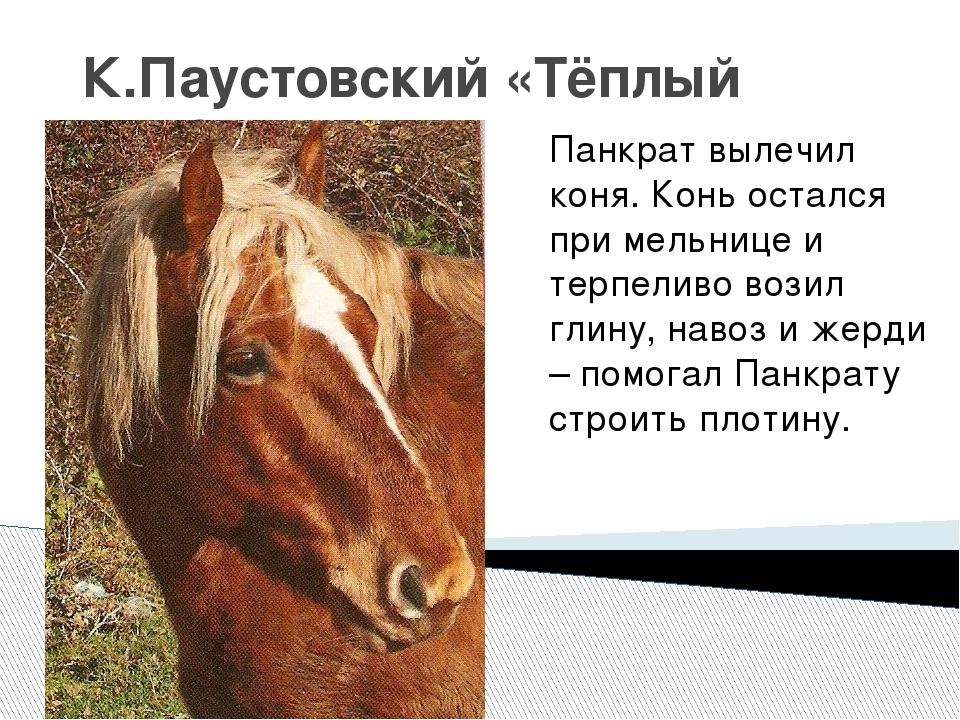 К.Паустовский «Тёплый хлеб»