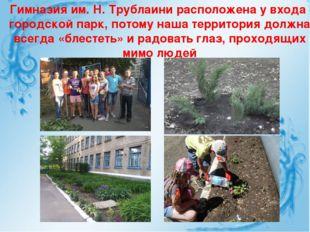 Гимназия им. Н. Трублаини расположена у входа в городской парк, потому наша