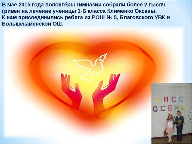 В мае 2015 года волонтёры гимназии собрали более 2 тысяч гривен на лечение уч...