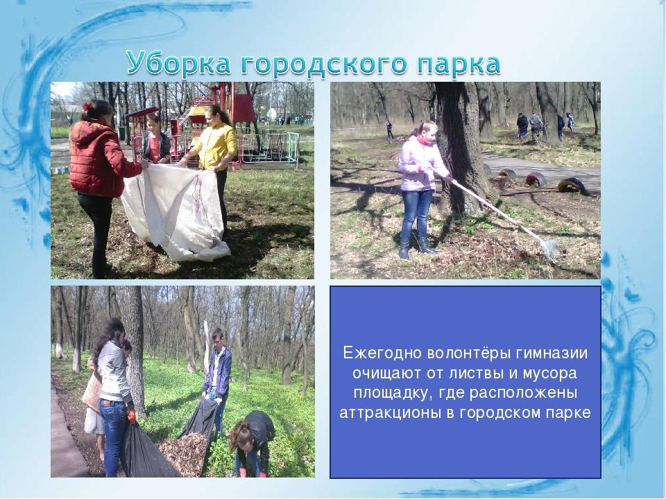 Ежегодно волонтёры гимназии очищают от листвы и мусора площадку, где располож...